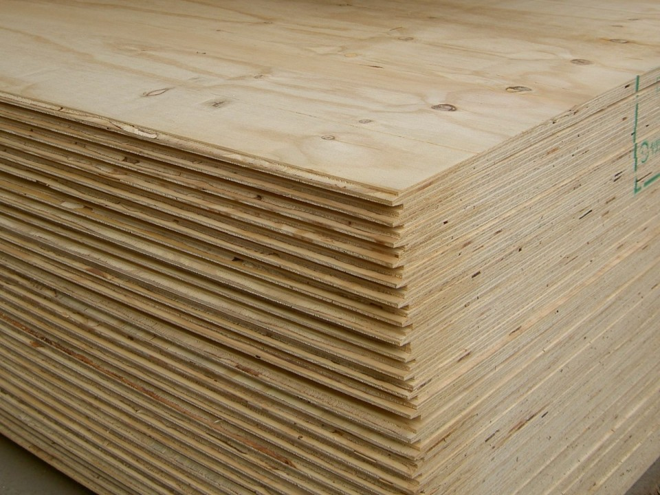 Sustainability And Plywood