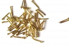 Brass nails
